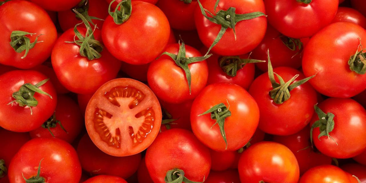 Spotlight On: Tomatoes