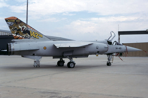 Mirage F.1M C.14-49/14-49 Spanish AF/Ala14 - tiger marks Oct-06