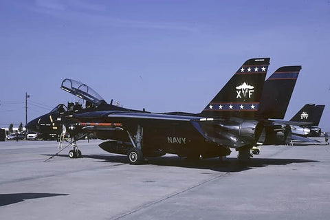 F-14D 164604/XF-01 USN/VX-9 Feb-00