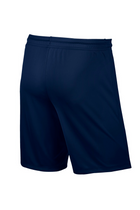 Nike Dri-FIT Shorts Navy