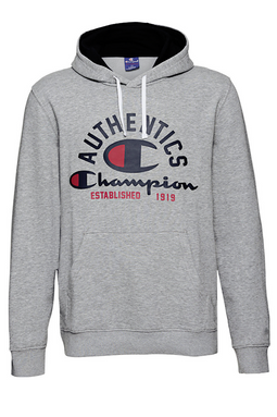 Champion Authentics Hoodie Grey
