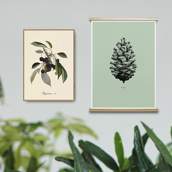 Botanical Art Prints Collection Image of a pine cone and branch of black cherries