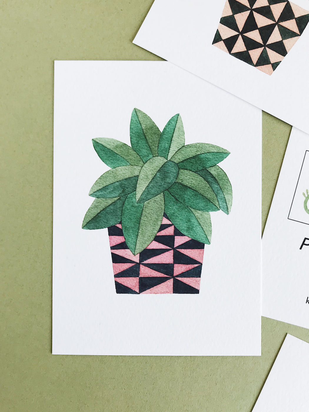 Set Of Five Potted Plants Postcards