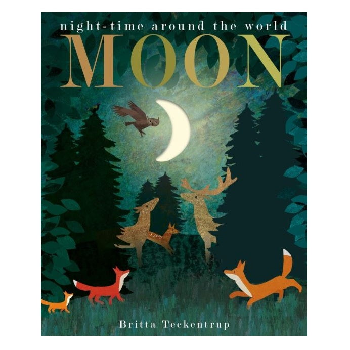 Moon: Night Time Around The World Board Book