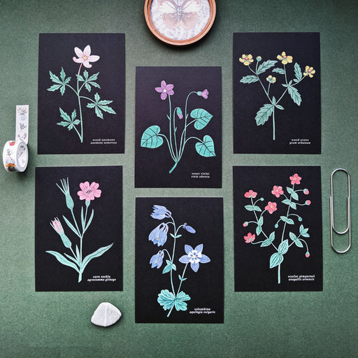 Set Of Six Wildflowers Postcards