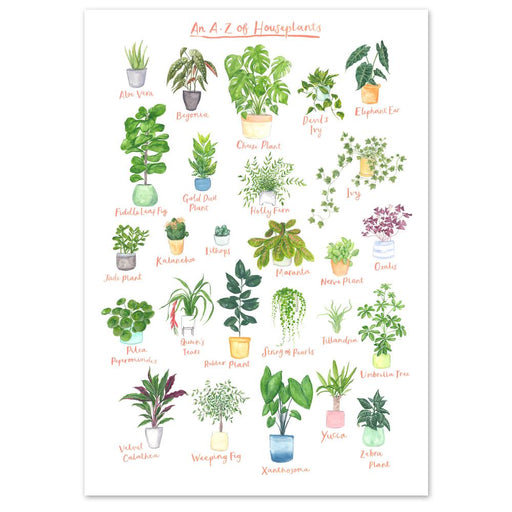 A4 A to Z of House Plants Art Print