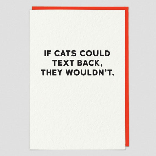 If Cats Could Text Back Blank Card