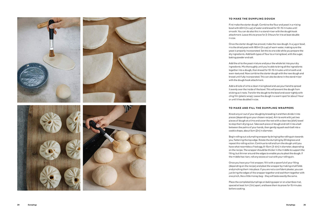 Dumplings And Noodles Recipe Book
