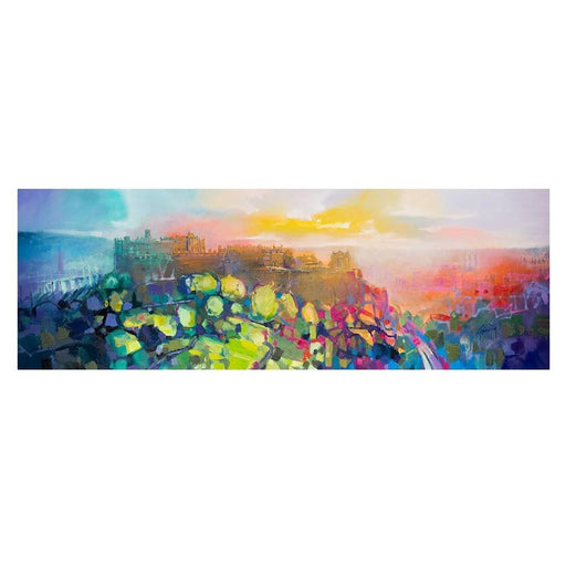 Edinburgh Castle Art Print