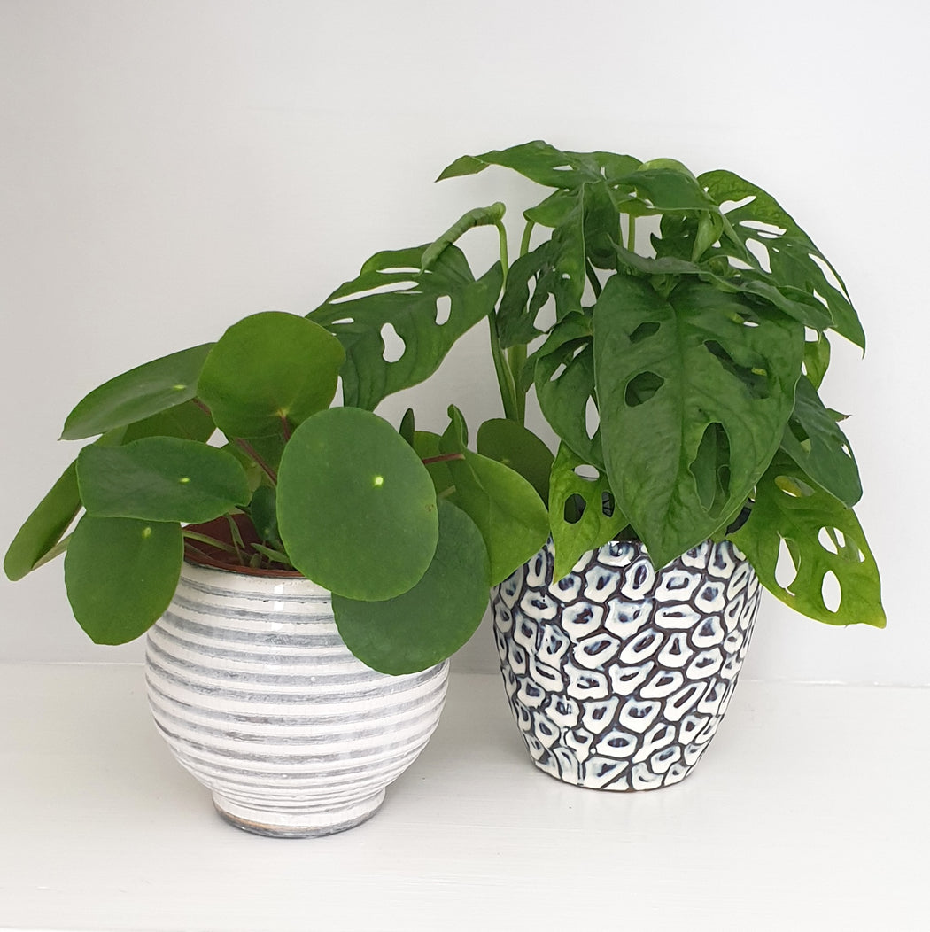 Blue and White Textured Plant Pot