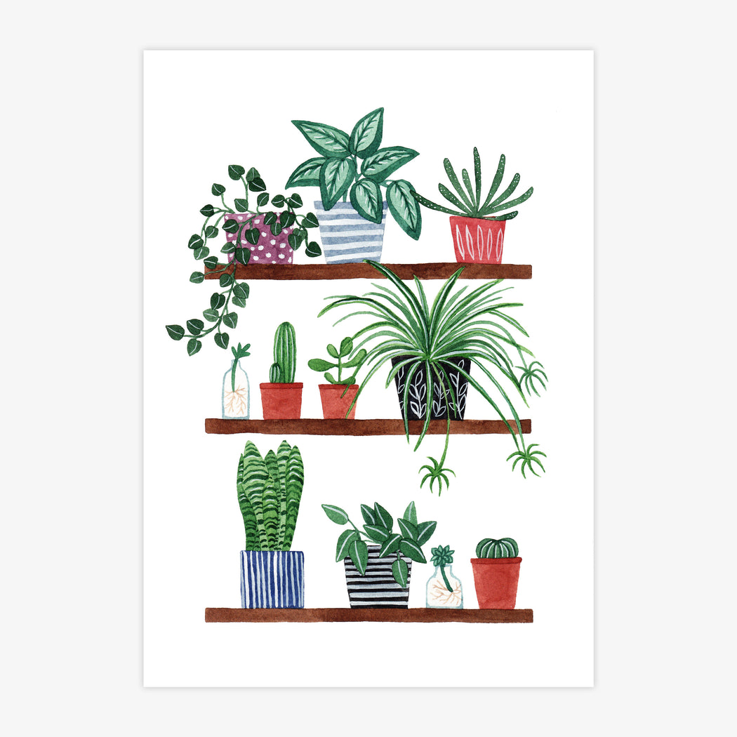 A4 Houseplants Art Print
