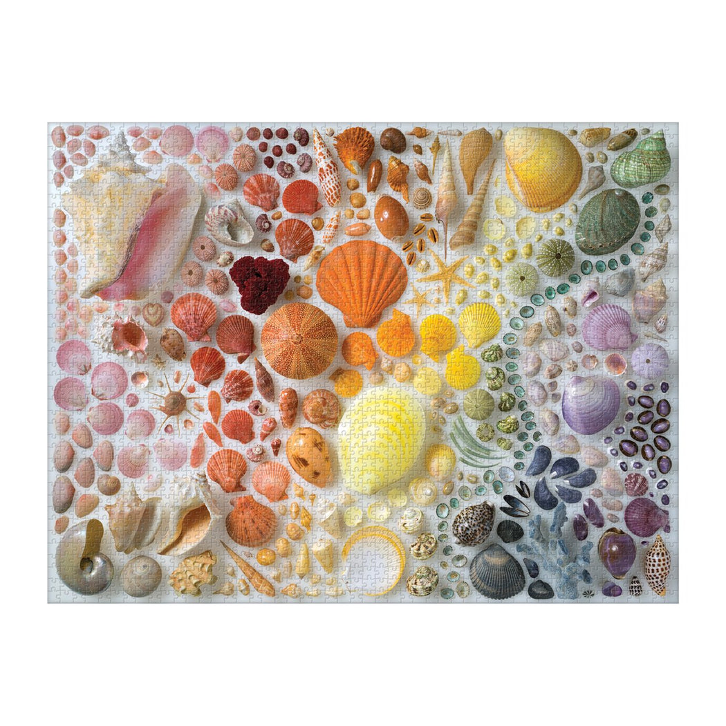 Rainbow Seashells - 2000 Piece Jigsaw Puzzle