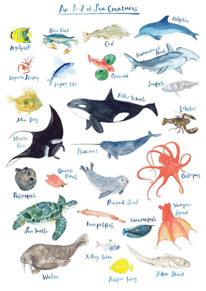A-Z of Sea Creatures print by Fiona Purves - A3