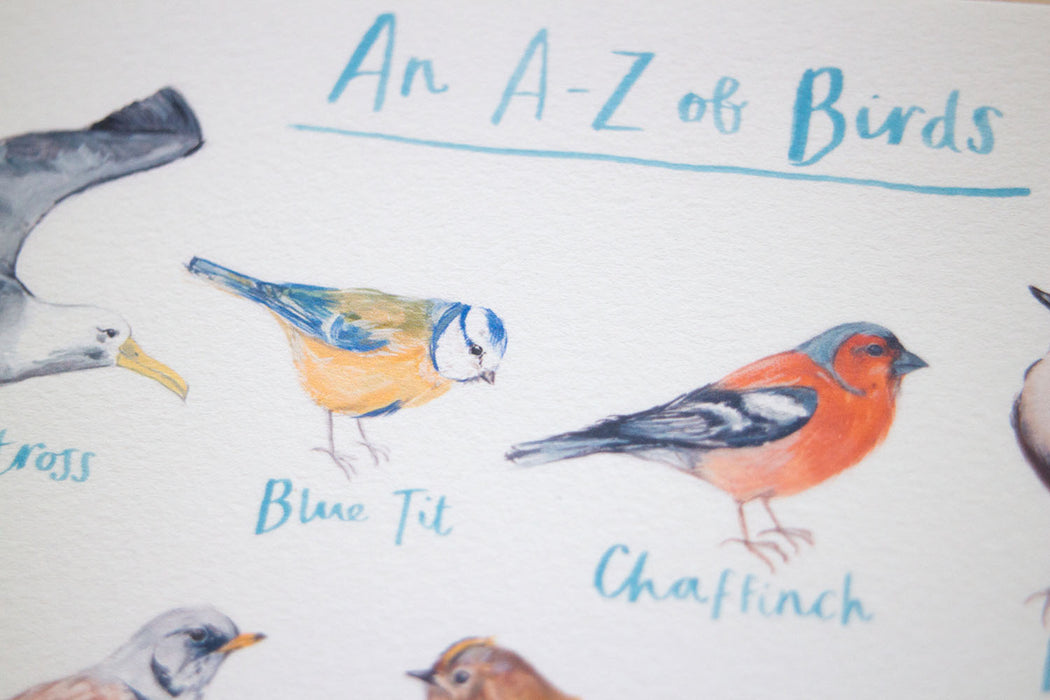 A3 A to Z of Birds Art Print