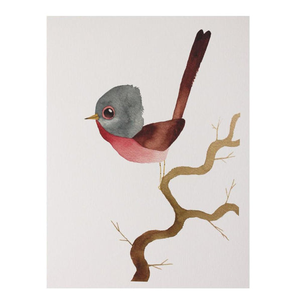 Dartford Warbler Print by Matt Sewell
