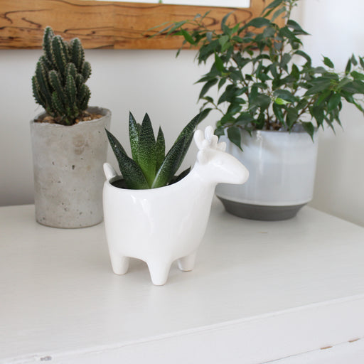 Small White Ceramic Deer Planter