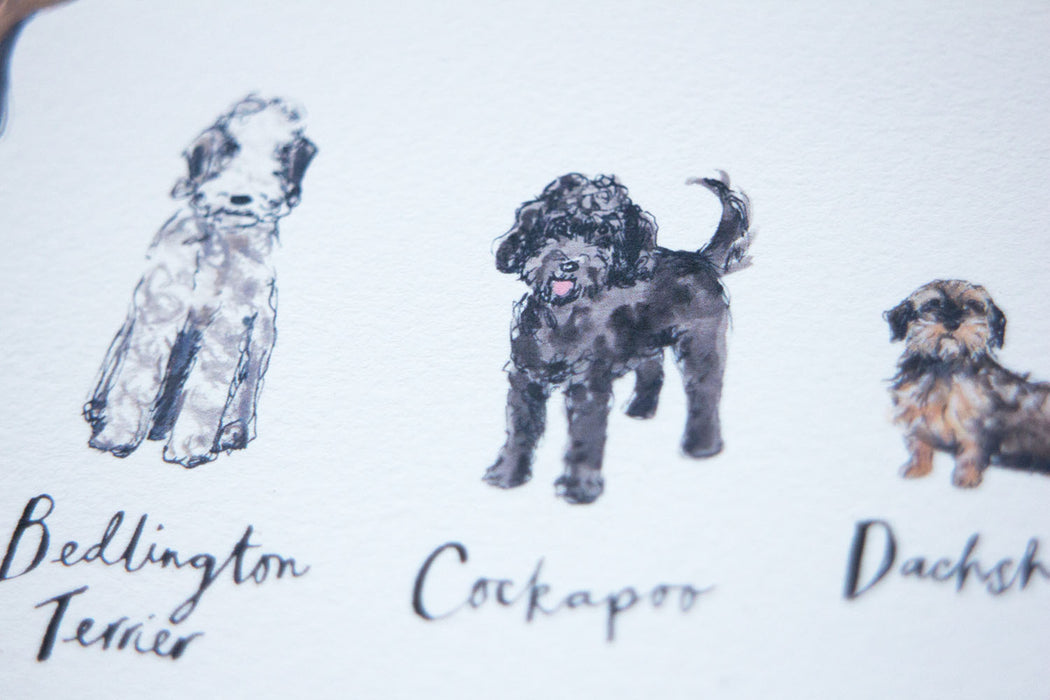 A3 A to Z of Dogs Art Print