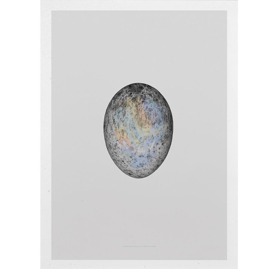 Translucent Egg by Paper Collective