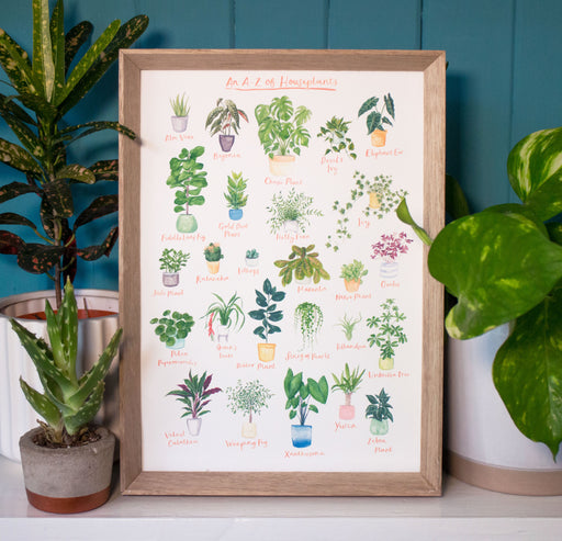 A3 A to Z of House Plants Art Print