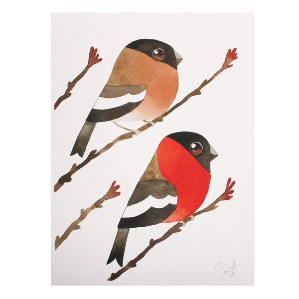 Mr & Mrs Bullfinch Print by Matt Sewell