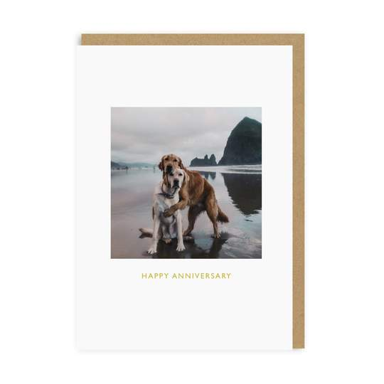 Hugging Dogs Anniversary Card