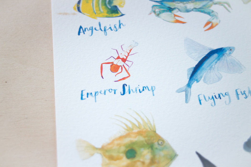 A4 A to Z of Sea Creatures Art Print