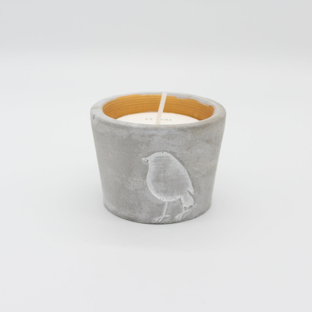 Winter Themed Scented Pot Candles