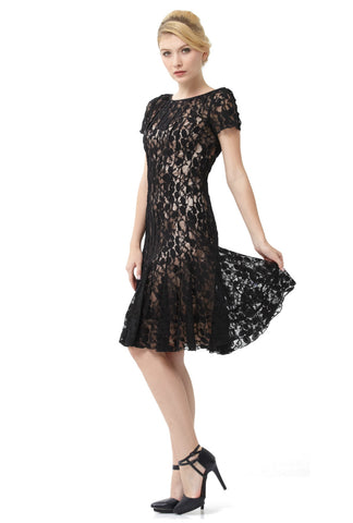 "Cap Sleeved Peek-a-Boo Lace Flare Dresses<br><p style=""color:red;"">Buy For $100</p>"