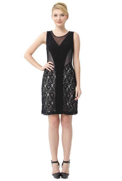 Mesh Lace Illusion Dress