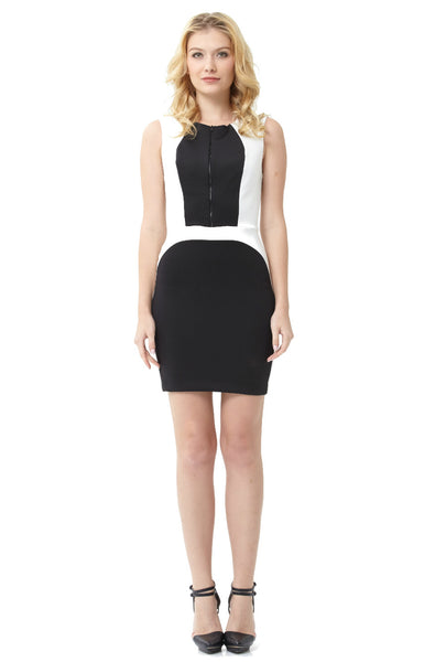 Two-Toned Techno Sheath Dress
