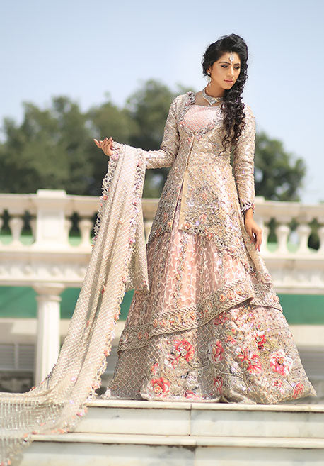 65bf2e80763 Online Pakistani Clothes