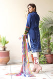 Blue Embroidered & Printed Outfit