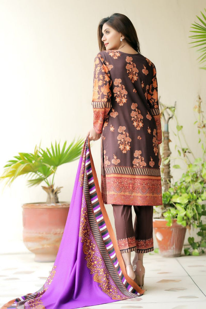 Brown Embroidered & Printed Outfit