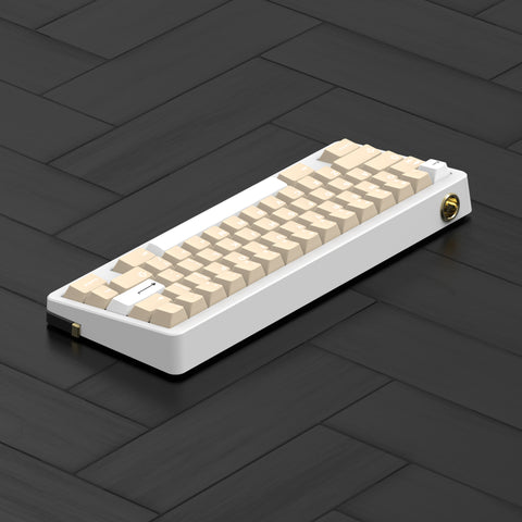 D60 WKL E-white/Black Mechanical Keyboard DIY KIT