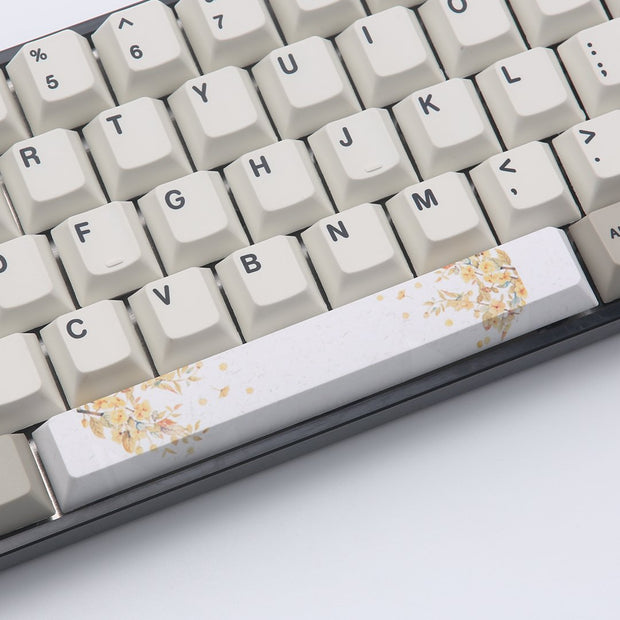 PBT Dye-subbed Spacebar 6.25U