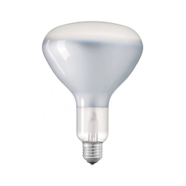 Light bulb filament Led R125 11W E27 Shiny Dimmable