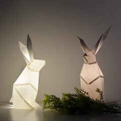 Rabbit - DIY Colour Paperlamp-Candeeiros-Light & Store-Cotton White-Light & Store