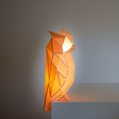 Night Owl - DIY Colour Paperlamp-Candeeiros-Light & Store-Light & Store