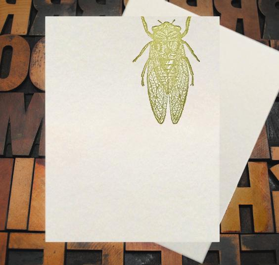 Appalachia Press Card Appalachia Press | Cicada