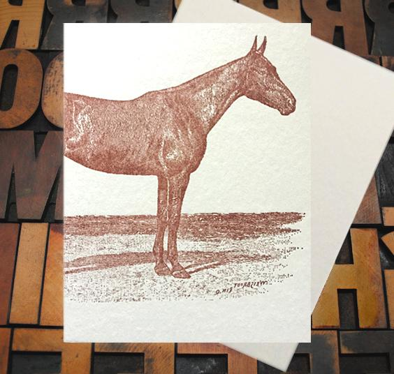 Appalachia Press Card Appalachia Press | Horse Proud