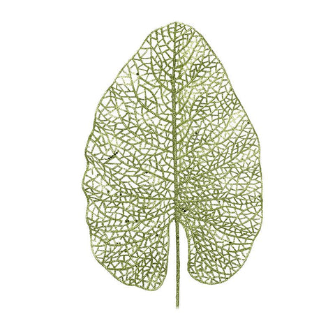 Green Leaf Decoration