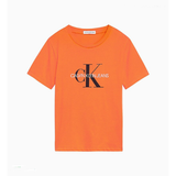 Calvin Klein Mono Logo T-Shirt JuniorAlive & Dirty