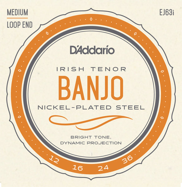 D'addario EJ63I Irish Tenor Banjo 12-36 - Regent Sounds