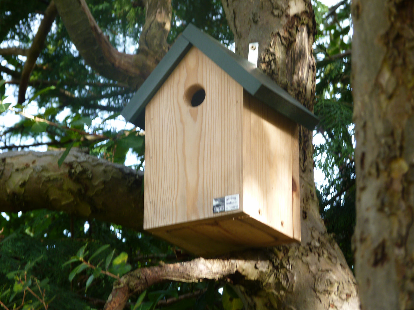 How to Put Up a Nest Box