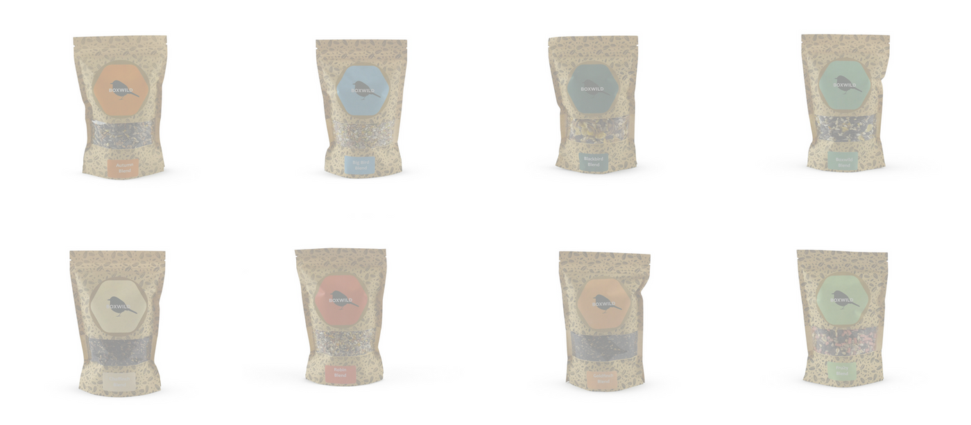 Subscription Bird Seed Gift