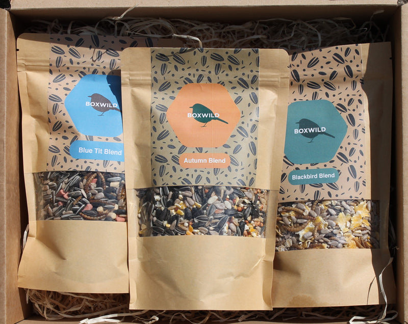 October Bird Seed Gift Box
