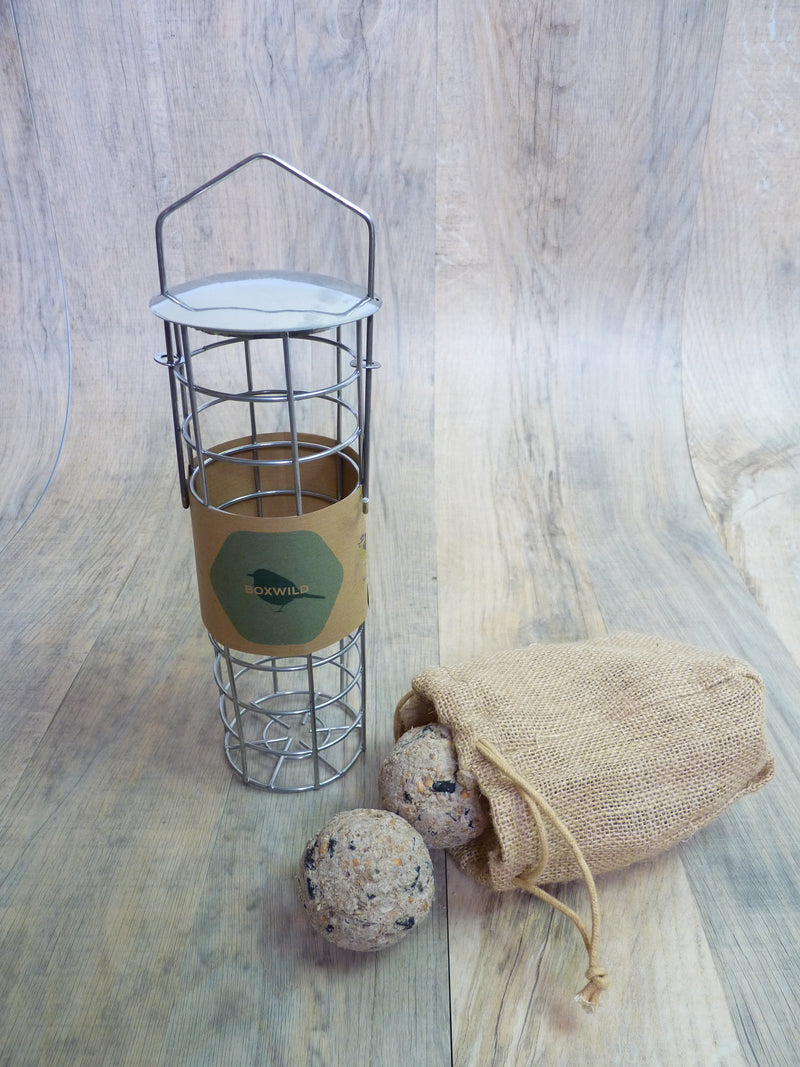 fatballs and fatball bird feeder