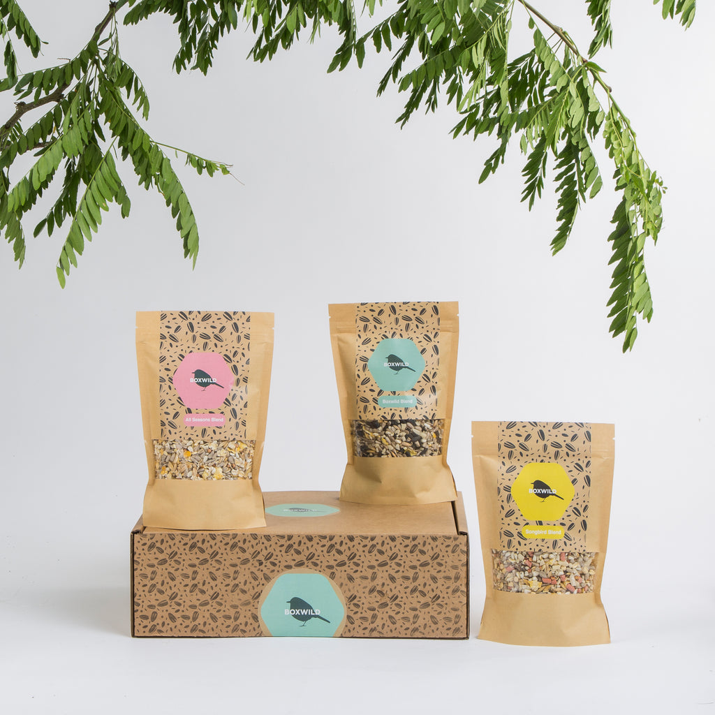 September Bird Seed Gift Box