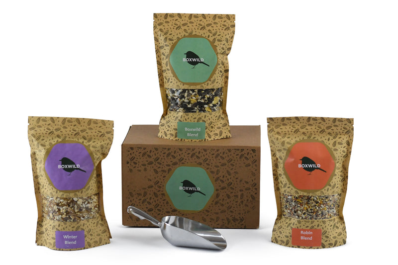 Christmas bird seed gift box