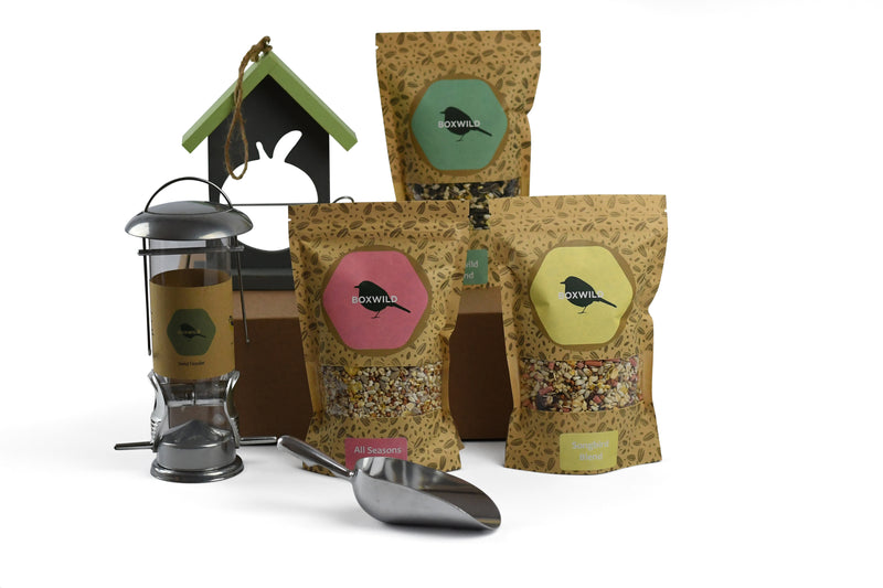 gift box bird feeder